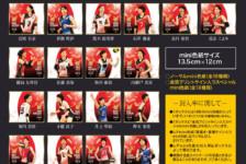 「火の鳥NIPPON2018」トレーディングmini色紙 発売!!
